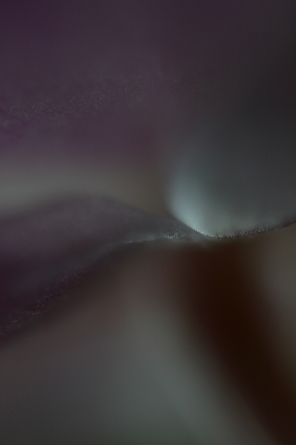 Honest Abstract Photography