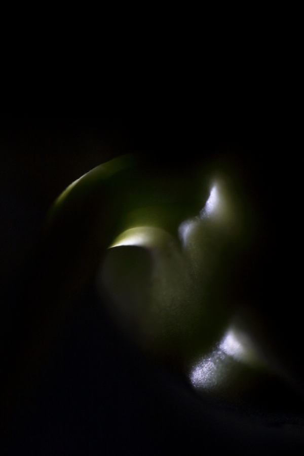 Fine Art Nature Abstract Photography